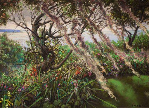 Spanish Moss (Long Island, North Shore)